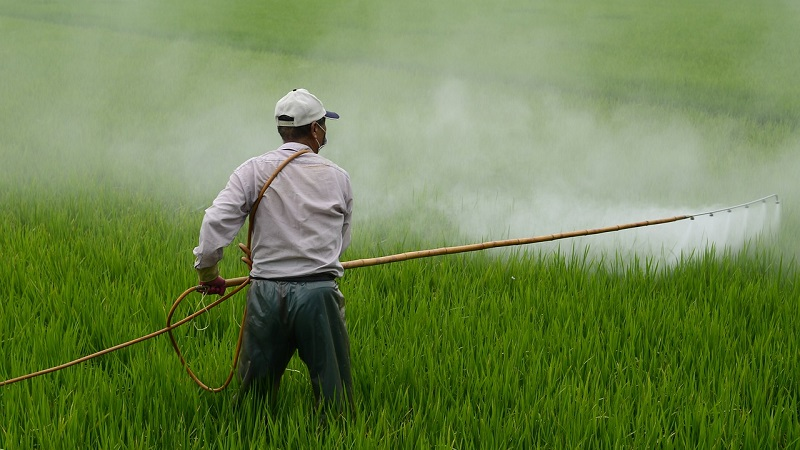 all-natural pesticides