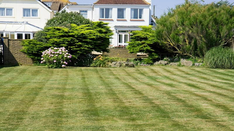 start mowing the lawn