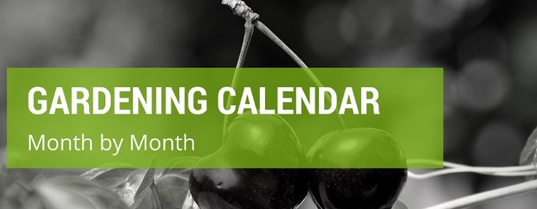 gardening month by month