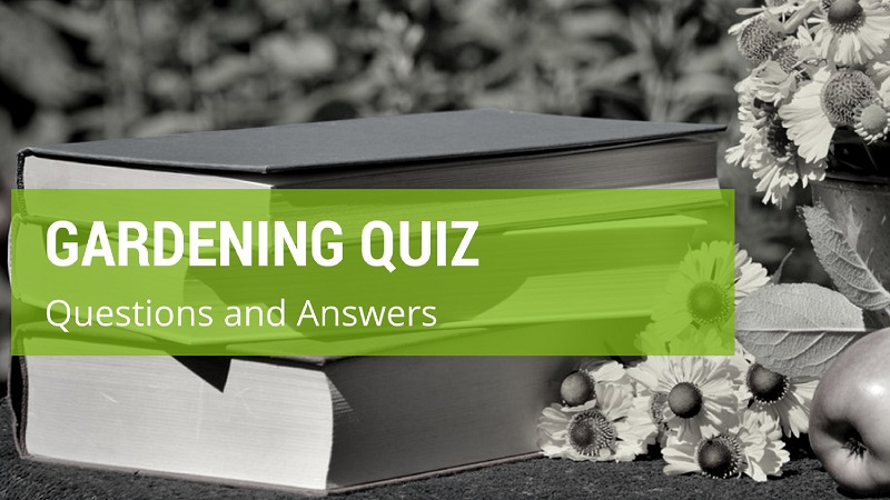 Gardening Quiz Questions And Answers [2018 Edition]