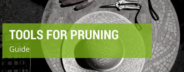 best tools for pruning