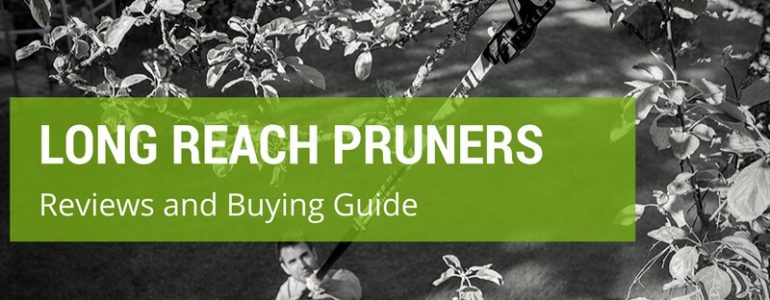 best long reach pruner