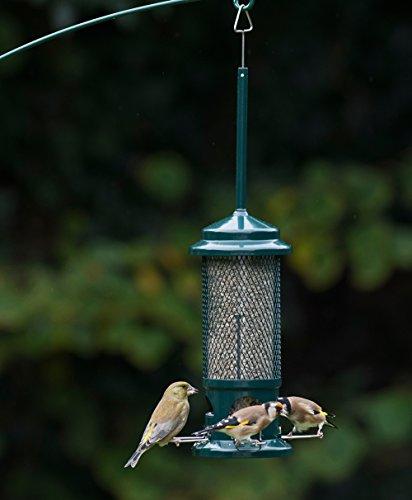 Jacobi Jayne Squirrel Proof Bird Feeder