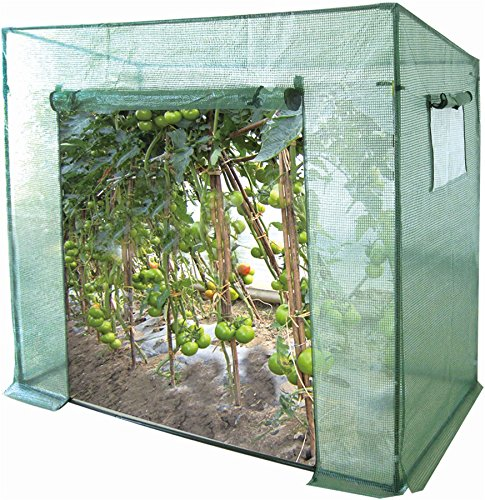 Harbour Housewares Vegetable Greenhouse