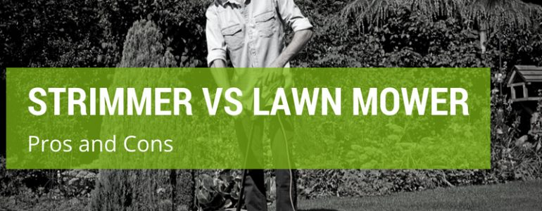 strimmer or lawn mower