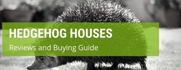 What Are The Best Hedgehog Houses On The UK Market?
