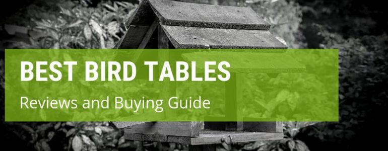 best bird tables