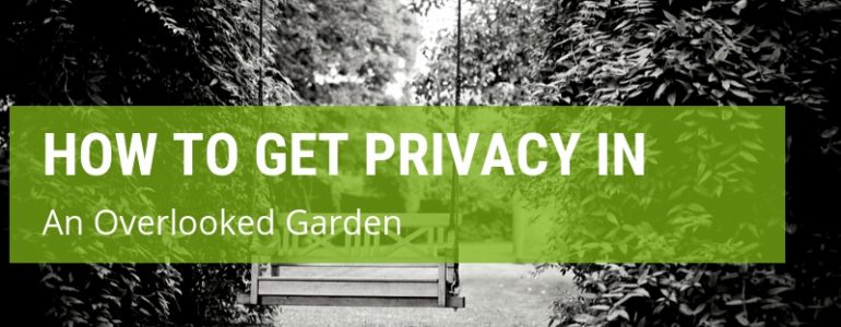how to get privacy in an overlooked garden