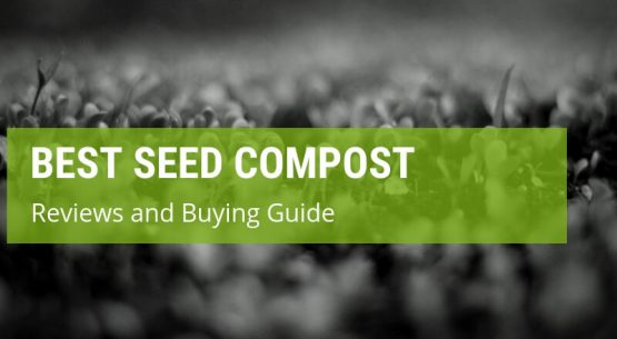 best seed compost