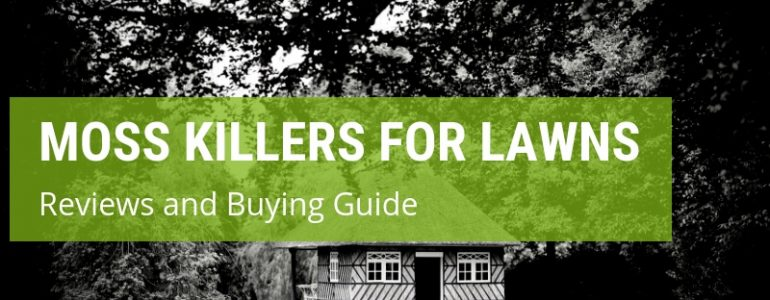 best moss killer for lawns