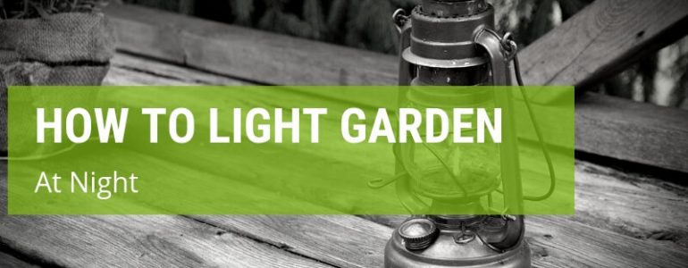how to light your garden at night