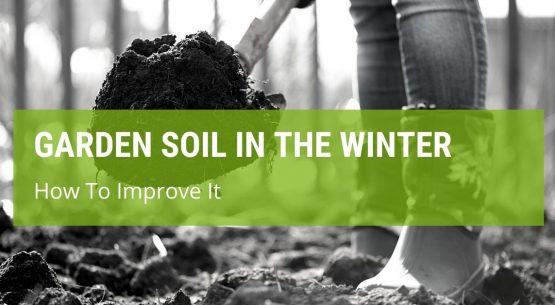 How To Improve Garden Soil Over The Winter?