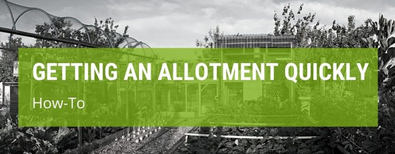 How To Get An Allotment Quickly In The UK?