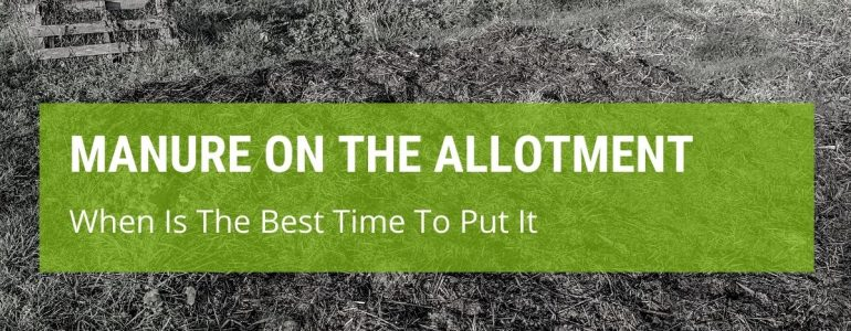 When Is The Best Time To Put Manure On The Allotment?
